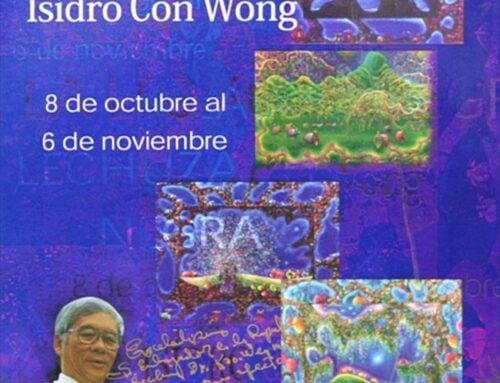 Museo del Niño: La lechuza negra